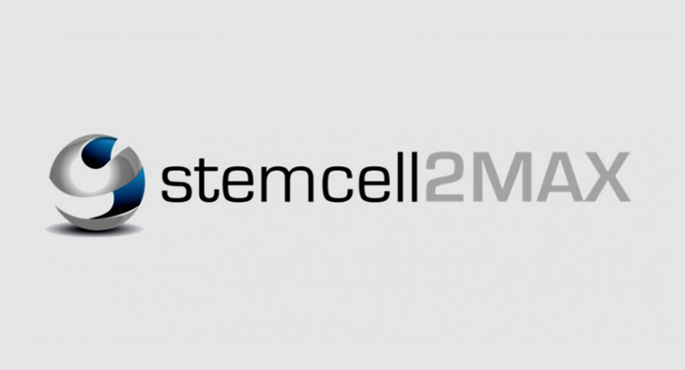 <p>Stem cells expansion</p>